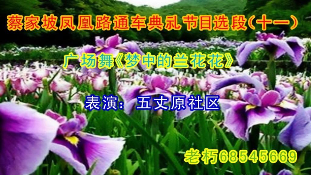 打开 打开 【二胡之家】女人花兰花花二胡独奏曲谱二胡十大名曲简谱