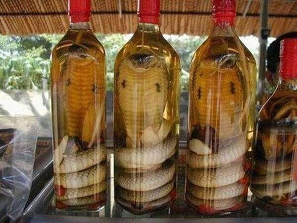 燕窝很恶心,在我们中国就有四样入选了,在我们的眼里还都是美食