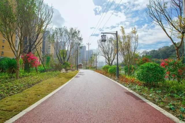 至2020年, 龍巖中心城區將建成13條城市綠道