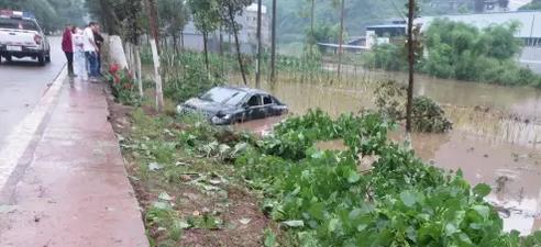 """轿车雨天玩""""漂移"""" 撞断路边小树后一头扎进水里"""