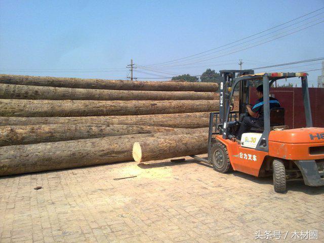当前俄罗斯大量木材堆积在货场,前段时间俄罗斯铁路调整严重影响了