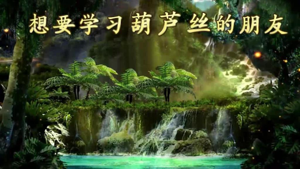 陈先亮葫芦丝表演艺术 之 西双勐牛 网络