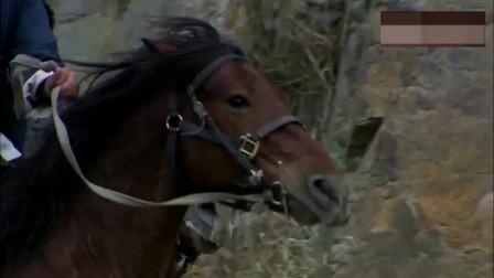 骑马的武工队枪法一流功夫了得,专门把鬼子爆头一枪炸得鬼子身亡