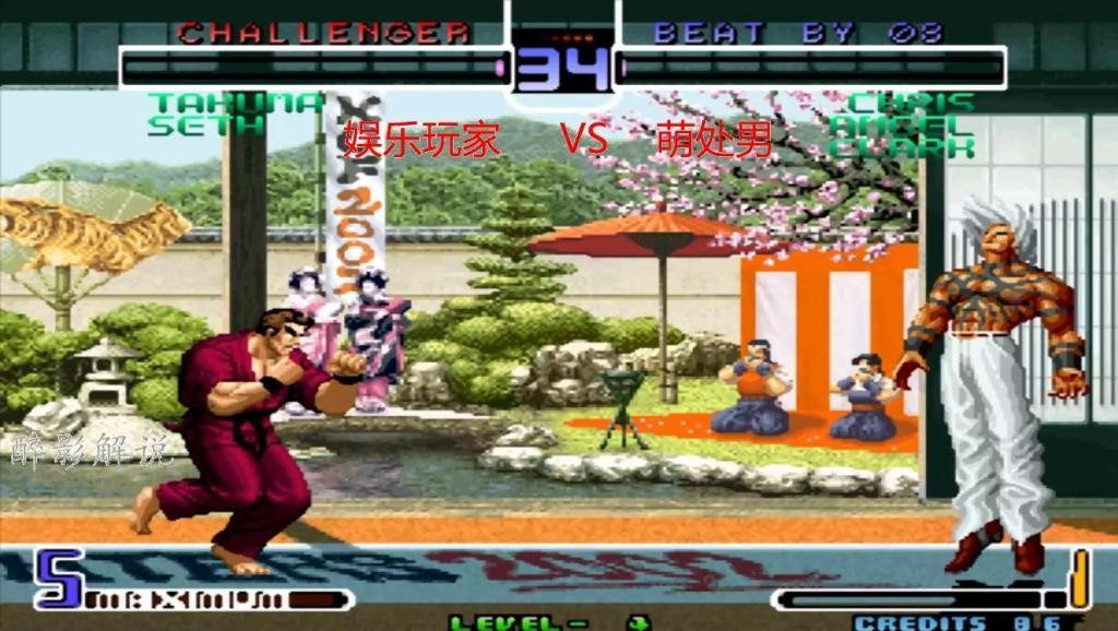 克里斯打出隐藏必杀技,变身boss大蛇征服对手 打开 拳皇2002: 蔡宝健