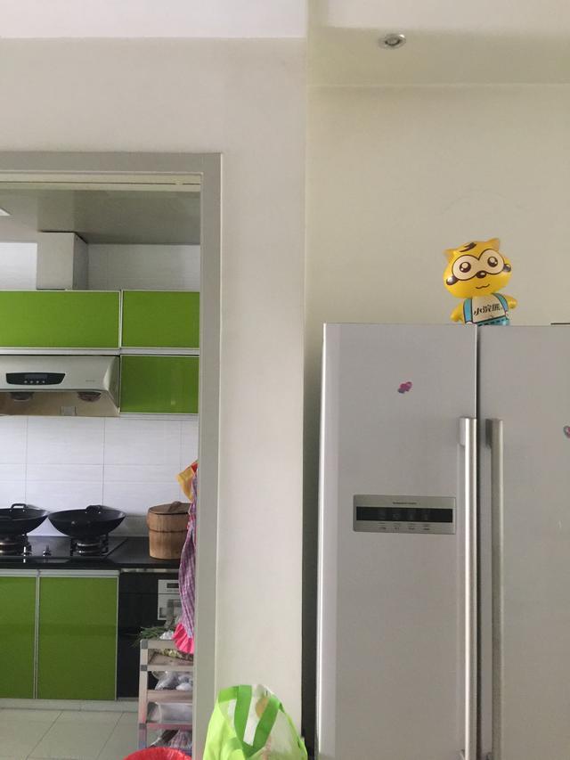 客厅冰箱酒柜子效果图