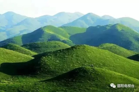 新宁黄金牧场风景照片