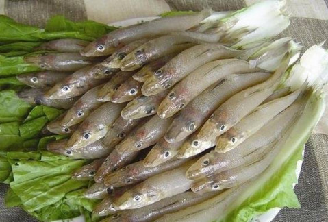 阳江人日常餐桌上常吃的海鲜鱼类 你知道多少?