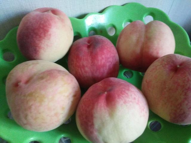 桃子新吃法, 大多数人不知道, 吃一次爱上