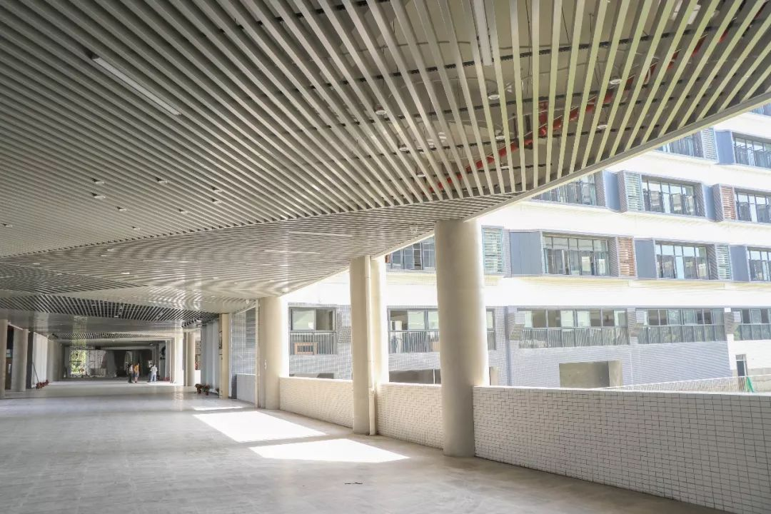 未来4年, 狮山将新建扩建学校16所, 新增学位2万多个!