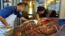 这只龙虾有多大,用2个菜篮都装不完!