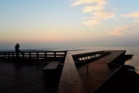 """葫芦岛自己的红海滩——兴城红海栈道正式扬帆"""""""