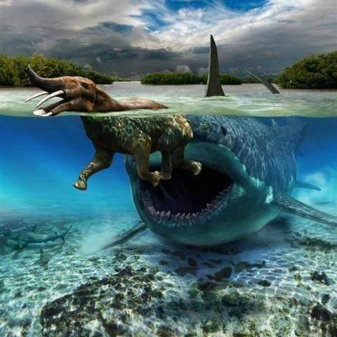 这几类凶猛怪兽存在的话 人类还能在地球生活得平静吗?