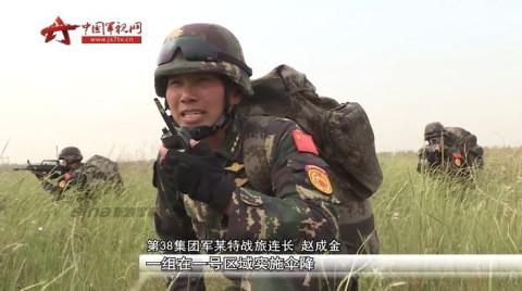 陆军集团军调整后,将原来的18个集团军调整为13个集团军.
