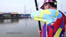 钓鱼: 130斤的大青鱼,是怎样拖上岸的?请看回放!
