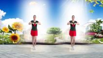 建群村广场舞《爱拼才会赢》单人水兵舞2017年最新广场舞带歌词
