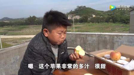河南商丘助农公益, 举手之劳买一箱脆苹果, 让贫困果农过个好年