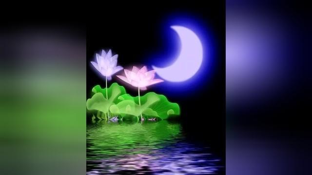 葫芦丝荷塘月色简谱 太阳 独龙族民歌 曲谱分析讲解示范