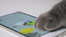 微信跳一跳,你可能还不如一只猫