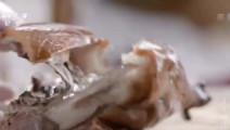 寻味顺德: 顺德烧鹅,一天仅做不到30只,皮脆肉嫩,看着就直流口水