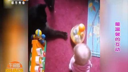 宝宝和猫咪有爱互动简直萌化