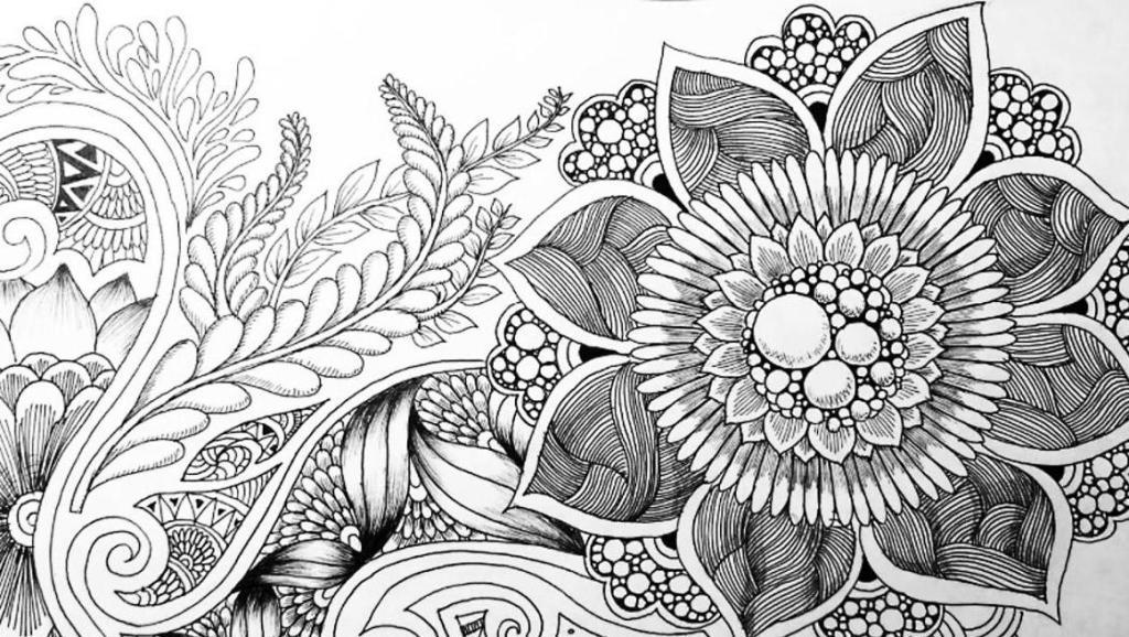 打开 打开 秘密花园 零基础禅绕手绘唯美植物插画 打开 漂亮的照片