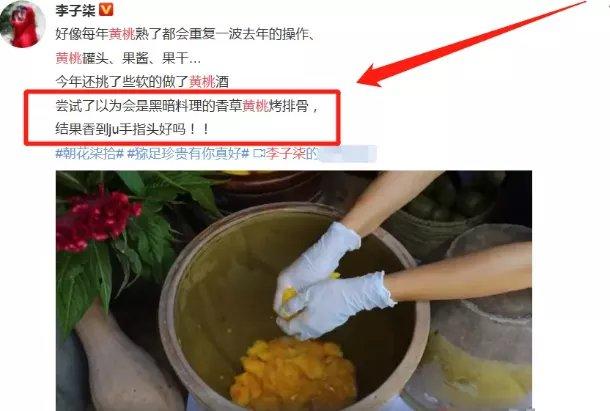 """李子柒首次挑战""""黑暗料理"""", 成品""""尴尬"""", 网友: 打扰了!"""