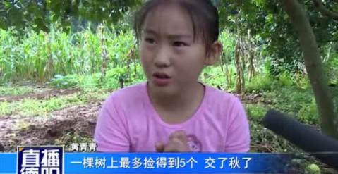 从左依次是 杨博文妈妈 德阳电视台主持人大头姐姐 黄青青爸爸 黄图片