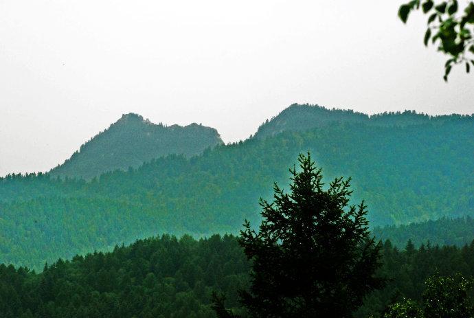 5公顷,是以保护国家一类野生动物褐马鸡为主的森林生态型自然保护区.