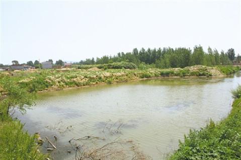 美丽中国背后故事: 秦皇岛像保护眼睛一样呵护北戴河