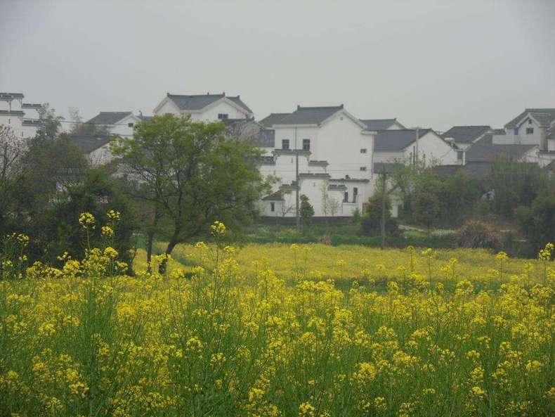 市溧水区洪蓝镇东南面,傅家边村优势明显,基础设施完善,山清水秀,自然