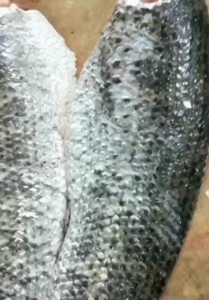 水煮鱼,酸菜鱼都要片制 学会了自己做 喜欢的老铁来个双击