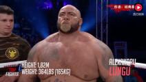 身大力不亏!330斤真正的重量级拳王曾一拳KO萨普