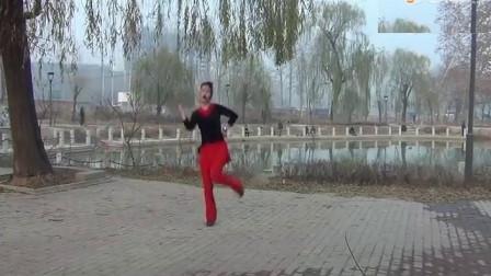 中油四季广场舞爱像一场纷飞雨 附背面教学