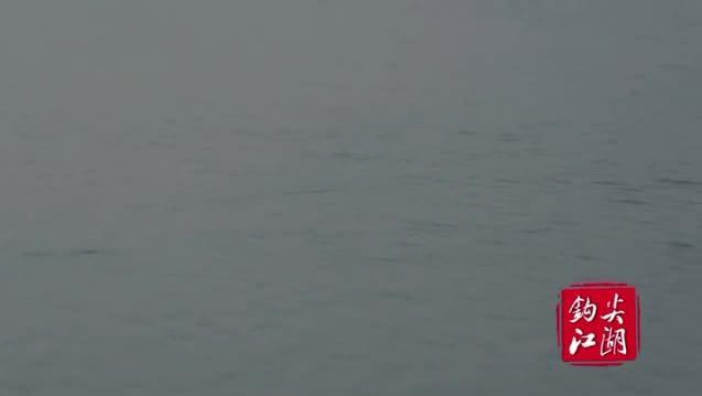 钓鱼怎么调漂视频 冬季水库钓鱼 哪里可以钓鱼
