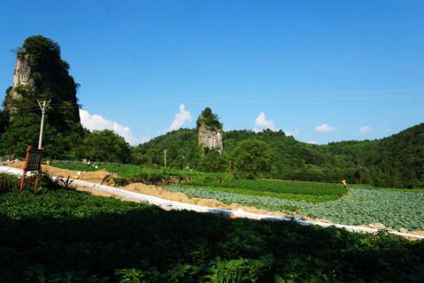 川洞田园旅游风景区