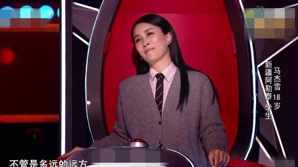 被刘欢淘汰, 抄袭国外歌曲, 他凭什么当导师  好声音
