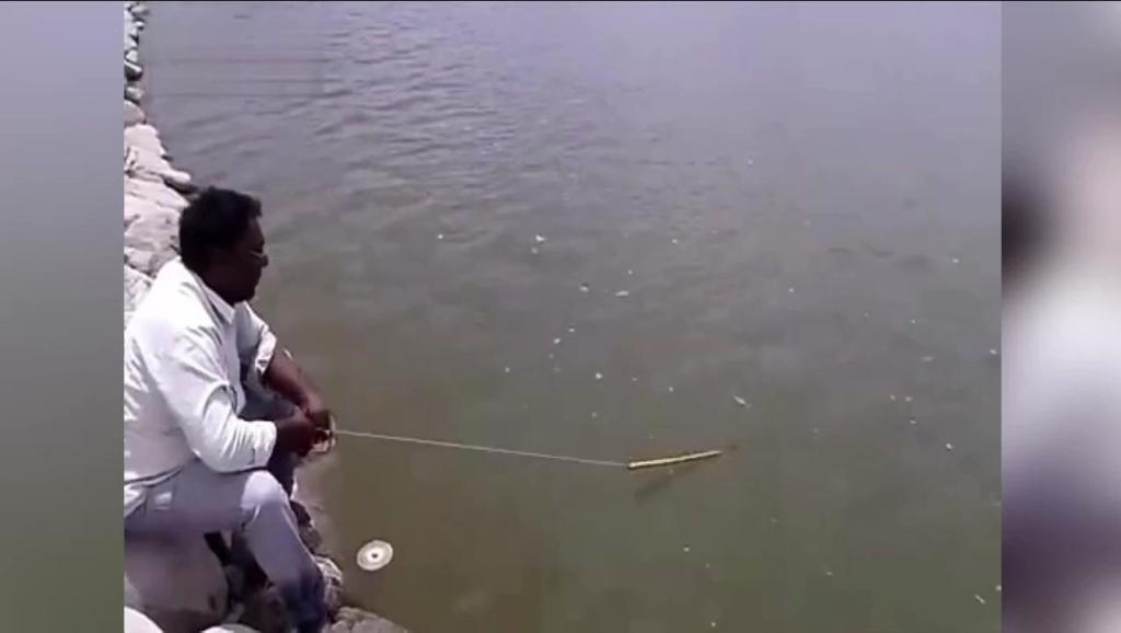 印度三哥的奇葩钓鱼方式,看完才明白,真的没法跟我们比!