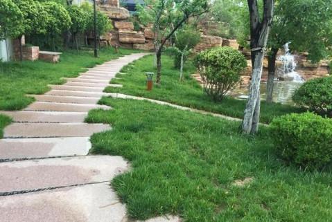 江苏富豪900万建农村别墅, 园林景观面积超大, 堪比故宫后花园