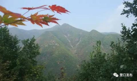 地址:赤山风景区位于盖州市万福镇与矿洞沟镇交界处.