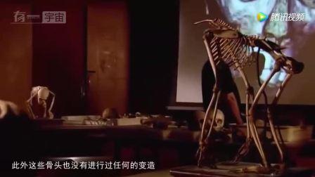 纳斯卡发现异形木乃伊, 考古学家: 排除人类或是外星婴儿!