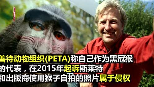 """猴子""""自拍照""""官司庭外和解 部分收益捐慈善"""