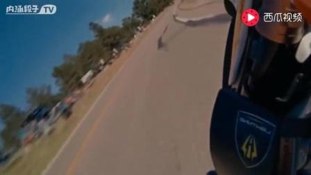 纯电动摩托车3块钱跑800公里,比高铁还快,特斯拉这次要out了