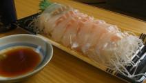 下酒菜の旅人 太好吃了吧 刺身意面鱼肉泡面牛排沙拉