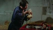 看成龙吃霸王餐和洪金宝吃饭样子,小鲜肉还真演不出来