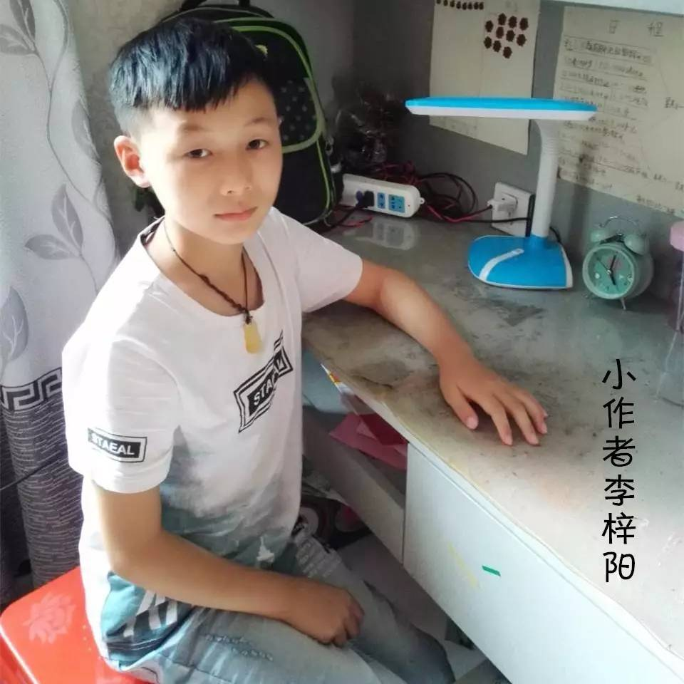《我的同桌》四年级: 李梓阳 指导老师: 张晶