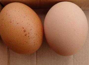这种鸡蛋不要买, 更不要吃, 记得告诉家里人