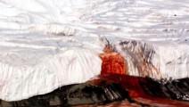 """南极""""血瀑布""""谜团 一个多世纪的秘密终被解开"""