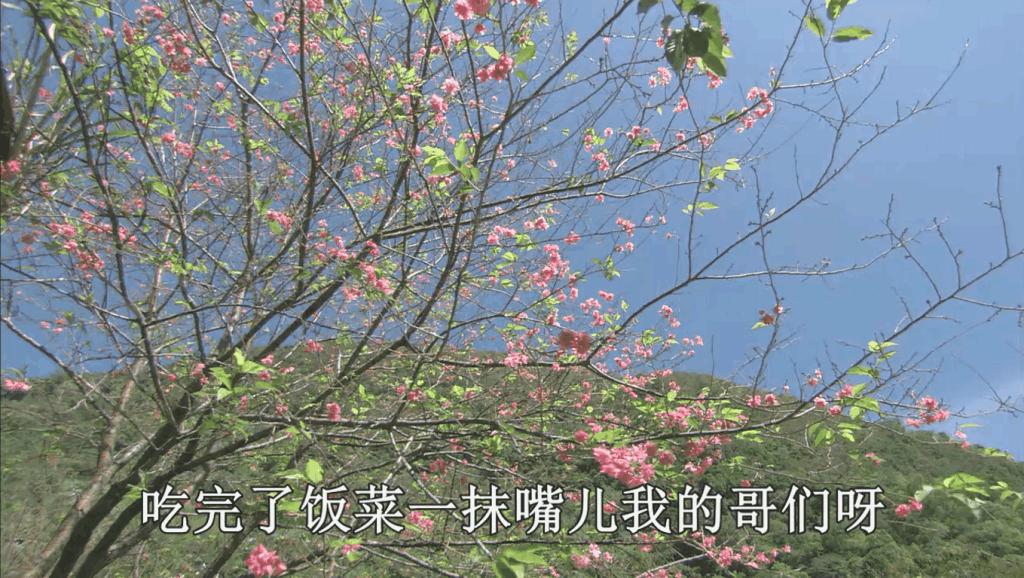 刘牧-十三不亲 经典老歌