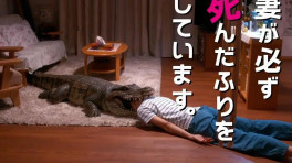 日本电影《每天回家都会看到我老婆在装死》发布预告,胆小慎入