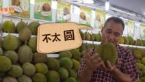 深入马来西亚当地,教你分辨真正的猫山王榴莲